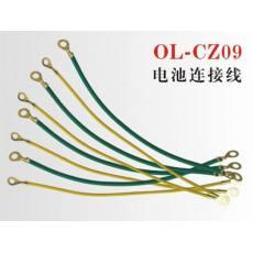 OL-CZ09电动车电源线