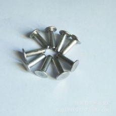 五金 不锈钢销轴 销钉 非标冷锻件 平头销钉