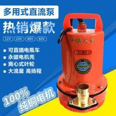 电瓶直流潜水泵24V12v微型潜水泵船用48V潜水泵电瓶泵