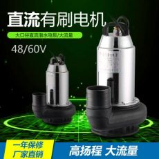 48V60V有刷直流潜水泵户外农业灌溉电动车抽水泵